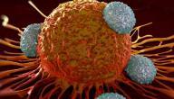 تعزيز الجهاز المناعي والوقاية من الإنفلونزا طبيعياً