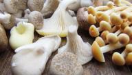 أطعمة غنية بحمض البانتوثينيك (B5 أو ب5)