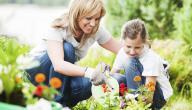 جهز حديقة منزلك لاستقبال الربيع