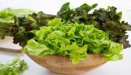 10 فوائد غذائية مذهلة للخس