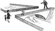 وجه الاختلاف بين عقدة إليكترا و عقدة أوديب