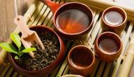 تخلص من السموم في جسمك من خلال الشاي