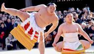 معلومات عامة عن رياضة السومو