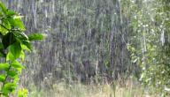 دعاء نزول المطر