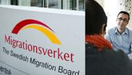 معلومات عن دائرة الهجرة السويدية