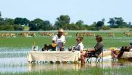 معلومات عن جمهورية بوتسوانا