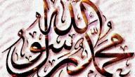 اسم ناقة الرسول محمد عليه السلام