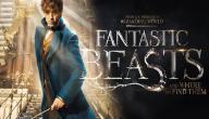 قصة فيلم Fantastic Beasts and Where to Find Them