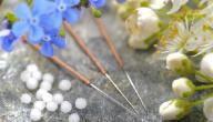 إبر الأعشاب الطبية وفوائدها