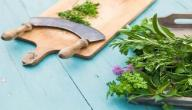 علاج لحمية الرحم بالأعشاب
