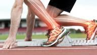 فوائد الماش للعظام