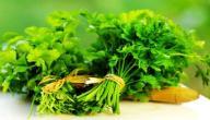فوائد الكزبرة الخضراء للكلى