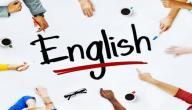 معلومات عن تخصص اللغة الإنجليزية