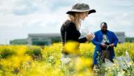 مفهوم الزراعة التجارية