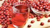 فوائد عصير التوت البري