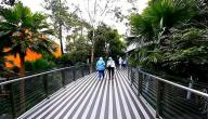 الأماكن السياحية في باندونق