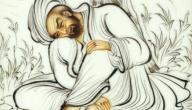 أهم الشعراء العرب