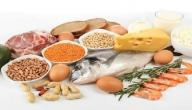 معلومات عن الأحماض الأمينية