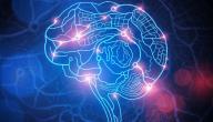 معلومات عن علم النفس السلوكي