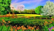 موضوع تعبير عن وصف الطبيعة في فصل الربيع
