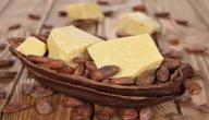 فوائد زبدة الكاكاو للحامل