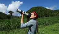 ما هي أساسيات التصوير