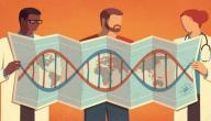 أكثر الأمراض الوراثية شيوعاً