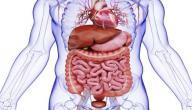 أعراض التهاب الاثنى عشر