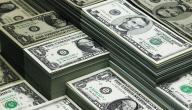 مفهوم رأس المال
