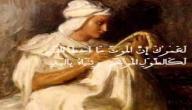 فلسفة معلقة طرفة بن العبد