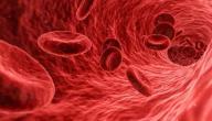طرق علاج حموضة الدم بالأعشاب