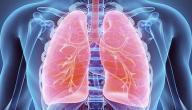 معلومات عن التهاب الجهاز التنفسي