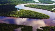 معلومات عن نهر الأمازون