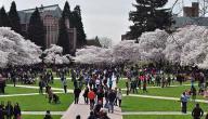 معلومات عن جامعة واشنطن