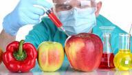 معلومات عن الأغذية المعدلة وراثياً
