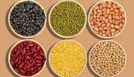 فوائد البروتين النباتي