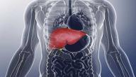 علاج تليف الكبد بالأعشاب
