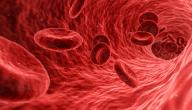 أمراض الدم الأكثر انتشاراً