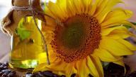 أضرار زيت دوار الشمس