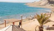 السياحة في البحر الميت