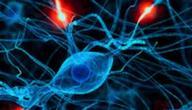 أعراض التهاب الأعصاب في الرأس