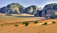 خصائص البيئة الصحراوية