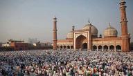 تاريخ الهند الإسلامي