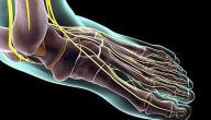 علاج شد أعصاب القدم