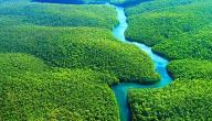 ما هو طول نهر الأمازون
