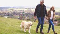 فوائد المشي في علم النفس