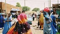 معلومات عن موريتانيا