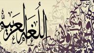 كلمة عن اللغة العربية
