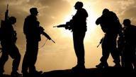 موضوع تعبير عن الجنود البواسل