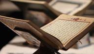 سبب نزول سورة النصر